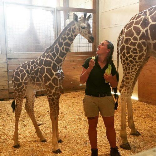 Allysa Swilley with Giraffe