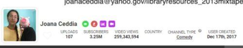 joana ceddia YouTube stats