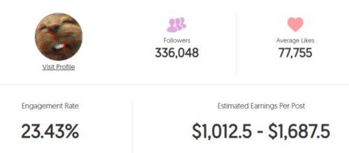 Spifey estimated Instagram earning