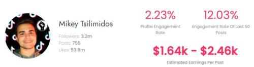 Mikey's estimated TikTok earning