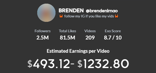Brendenlmao TikTok earning
