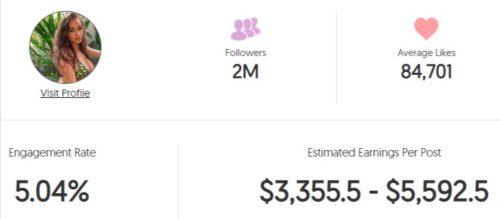 Iulia's estimated Instagram earning
