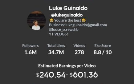 Luke Guinaldo tiktok engagement and earnings